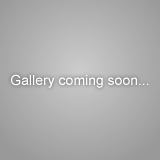 Gallery coming soon...